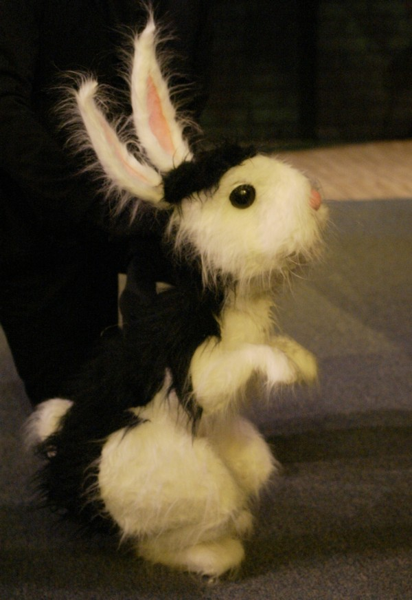 Bunnicula is ready for action!